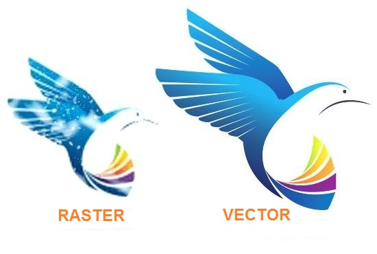 550x370 Raster And Vector Graphics. Difference Between The Two. Techfogg