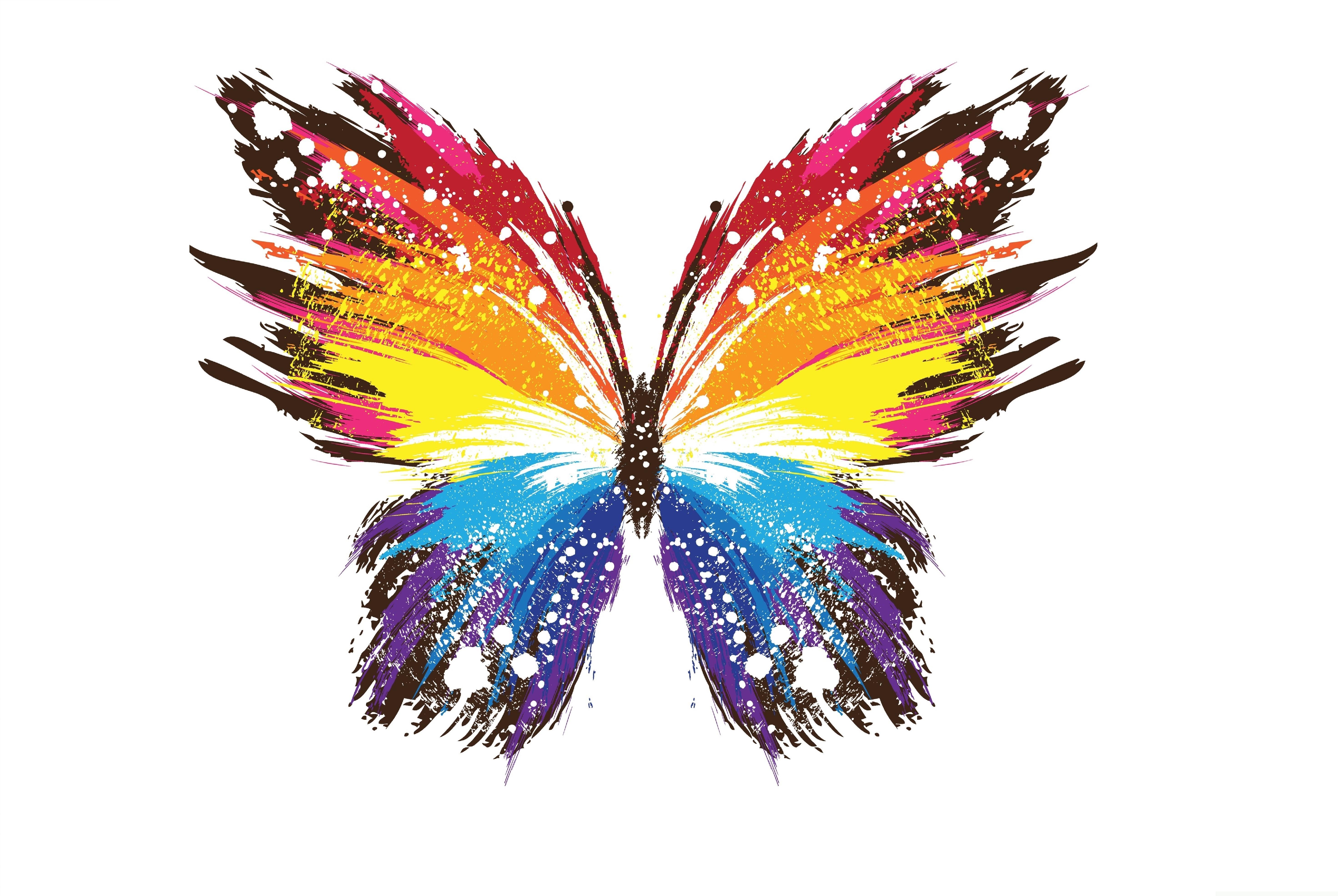 5883x3941 Wallpaper Butterflies Animals Vector Graphics 5883x3941