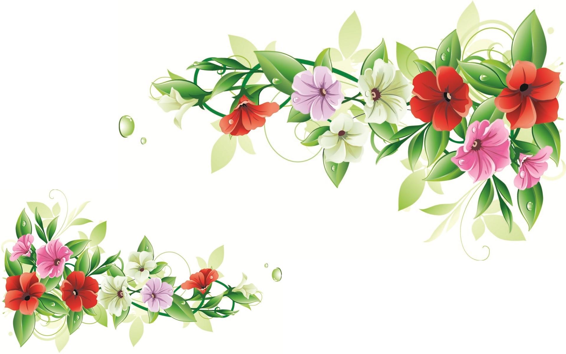 1920x1200 Flower Frame Nature Vector Hd Free Wallpaper ~ Flower Hd 169 High