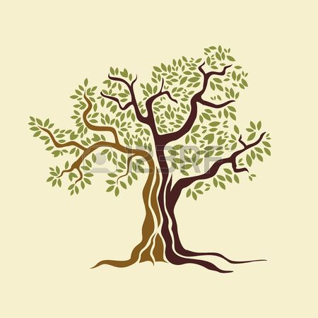 450x450 Olive Tree Vector Illustration Royalty Free Cliparts, Vectors, And