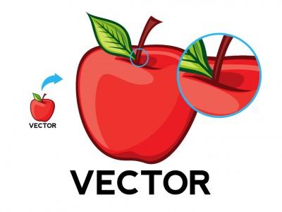 400x300 Explained Bitmap Versus Vector Graphics Tips Scan2cad