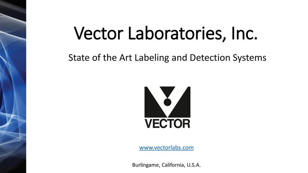 1024x576 Vector Laboratories, Inc.