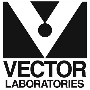 312x312 Bloxal Blocking Solution By Vector Laboratories,inc.