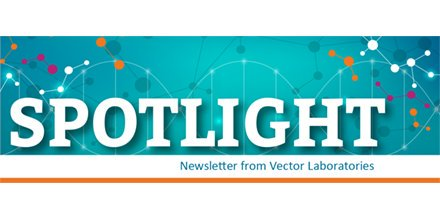 440x220 Vector Laboratories On Twitter Sign Up For Our Monthly Spotlight