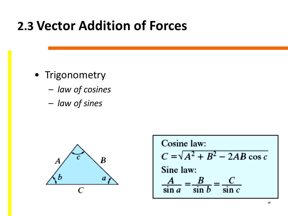 Vector Law