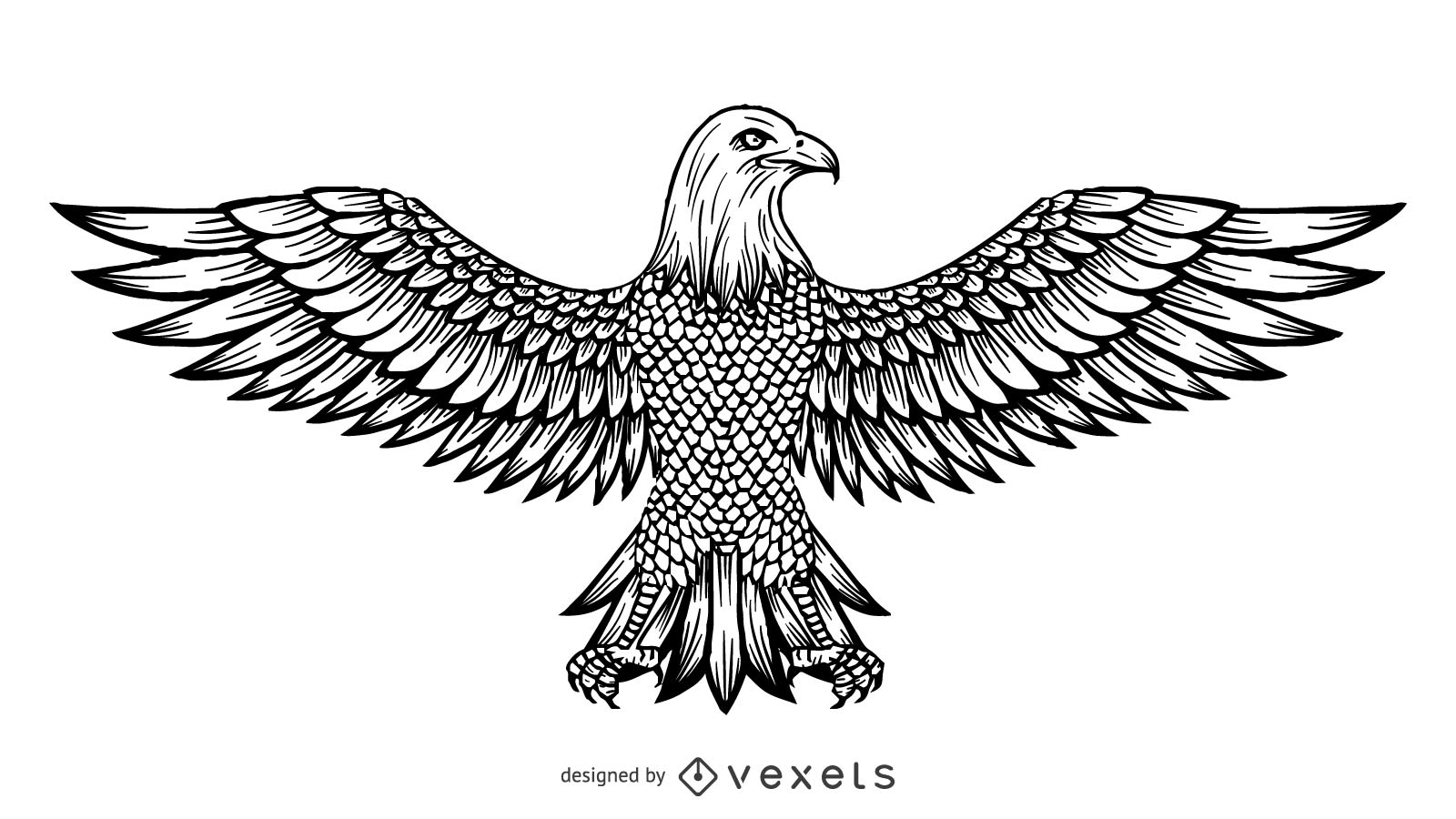 1600x900 Vector Line Drawing Of The Eagle