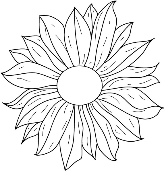 571x600 Flower Line Drawing Free Vector In Adobe Illustrator Ai ( .ai