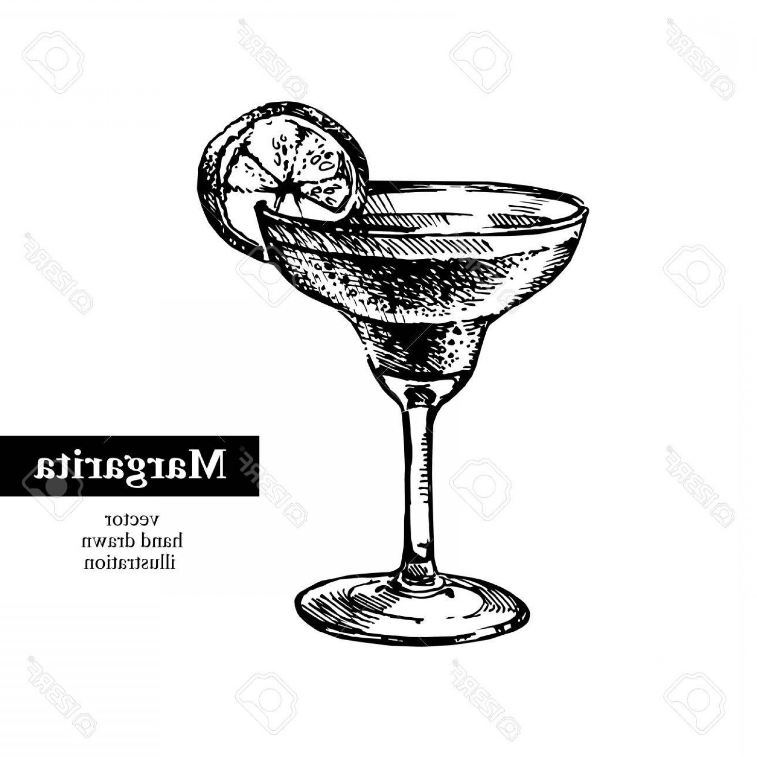1560x1560 Photostock Vector Hand Drawn Sketch Cocktail Margarita Vintage