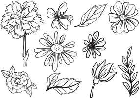 286x200 Daisy Flower Free Vector Art