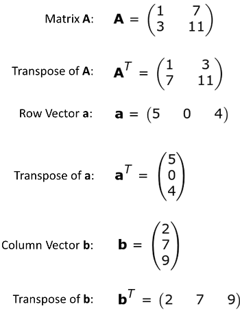 350x457 Difference Between A Row Amp Column Vector
