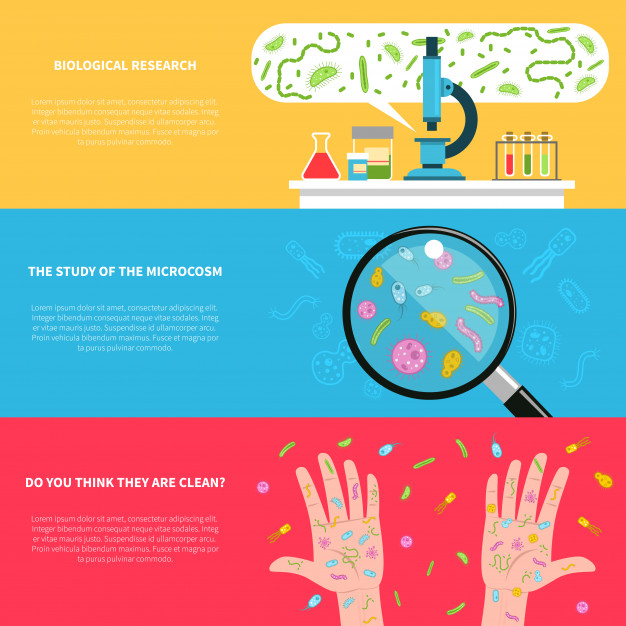 626x626 Microbiology Banner Set Vector Free Download