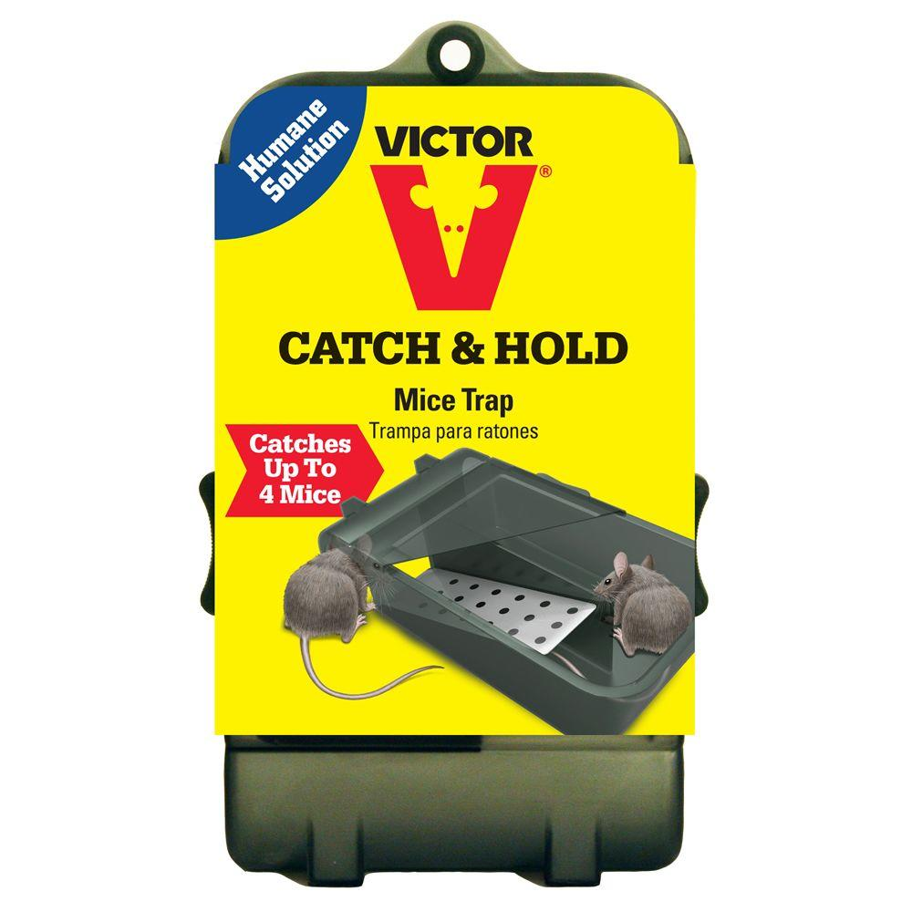 1000x1000 Victor Multi Catch Live Mouse Trap M333