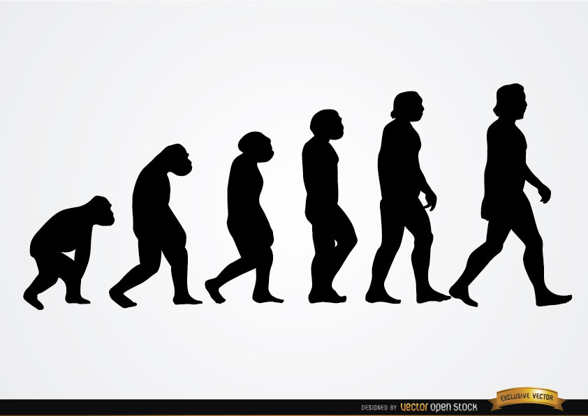 842x596 Human Evolution Silhouettes Download This Free Vector