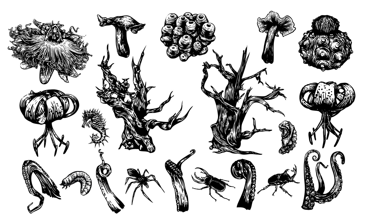 1270x770 Black Forest Vector Pack