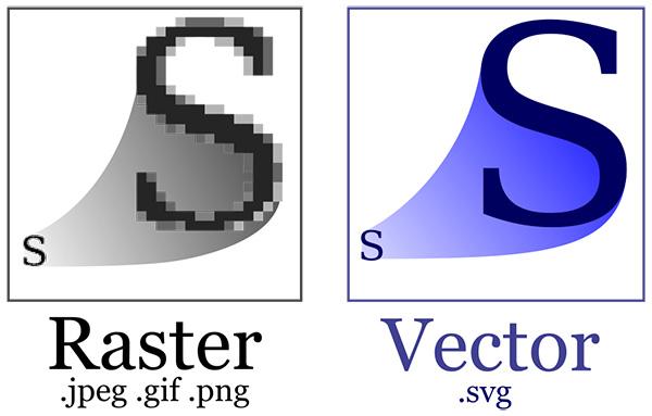 Vector Pdf