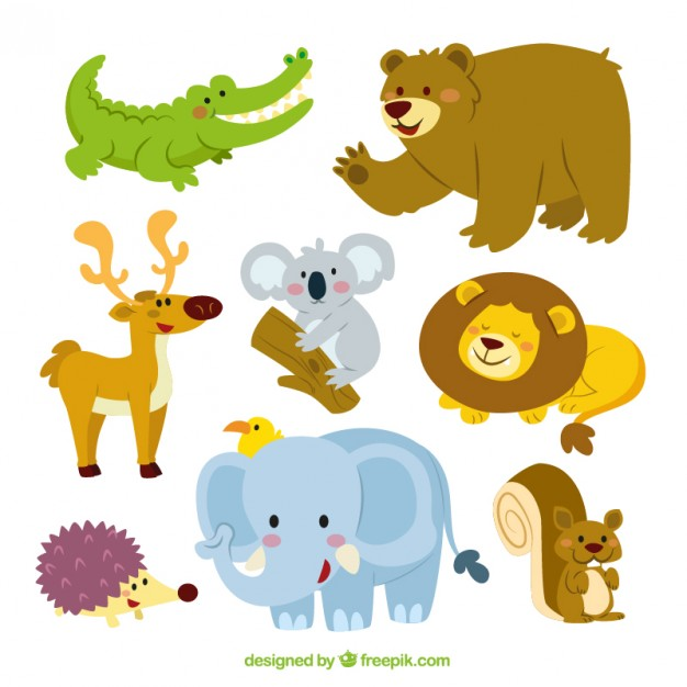 626x626 Cute Animals Collection Vector Free Download