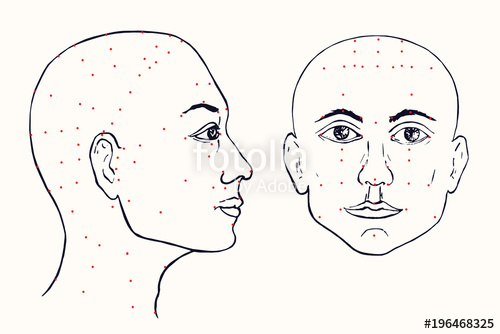 500x334 Face Set (Profile And Front) Acupuncture Scheme With Red Points