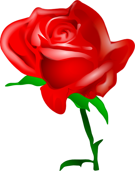 468x595 Red Rose Clip Art Free Vector 4vector
