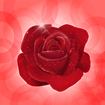 368x368 Red Rose Free Vector Download (7,468 Free Vector) For Commercial