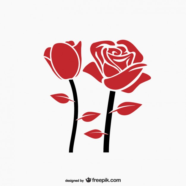 626x626 Red Rose Vector Vector Free Download