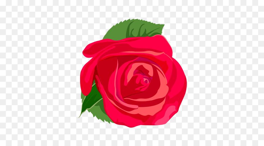 900x500 Rose Flower Euclidean Vector