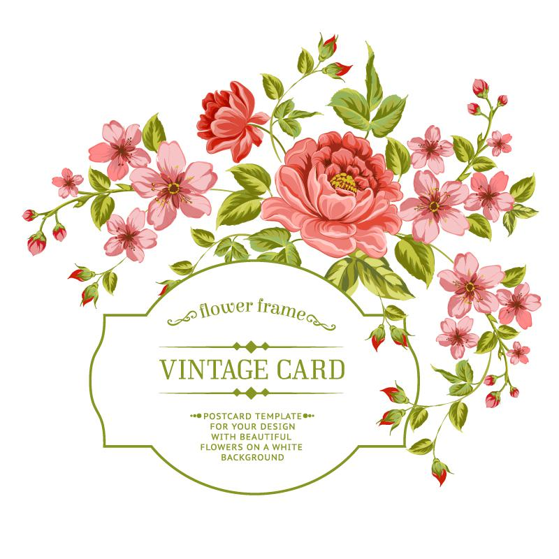 800x800 The Red Rose Blossom Card Vector [Eps]