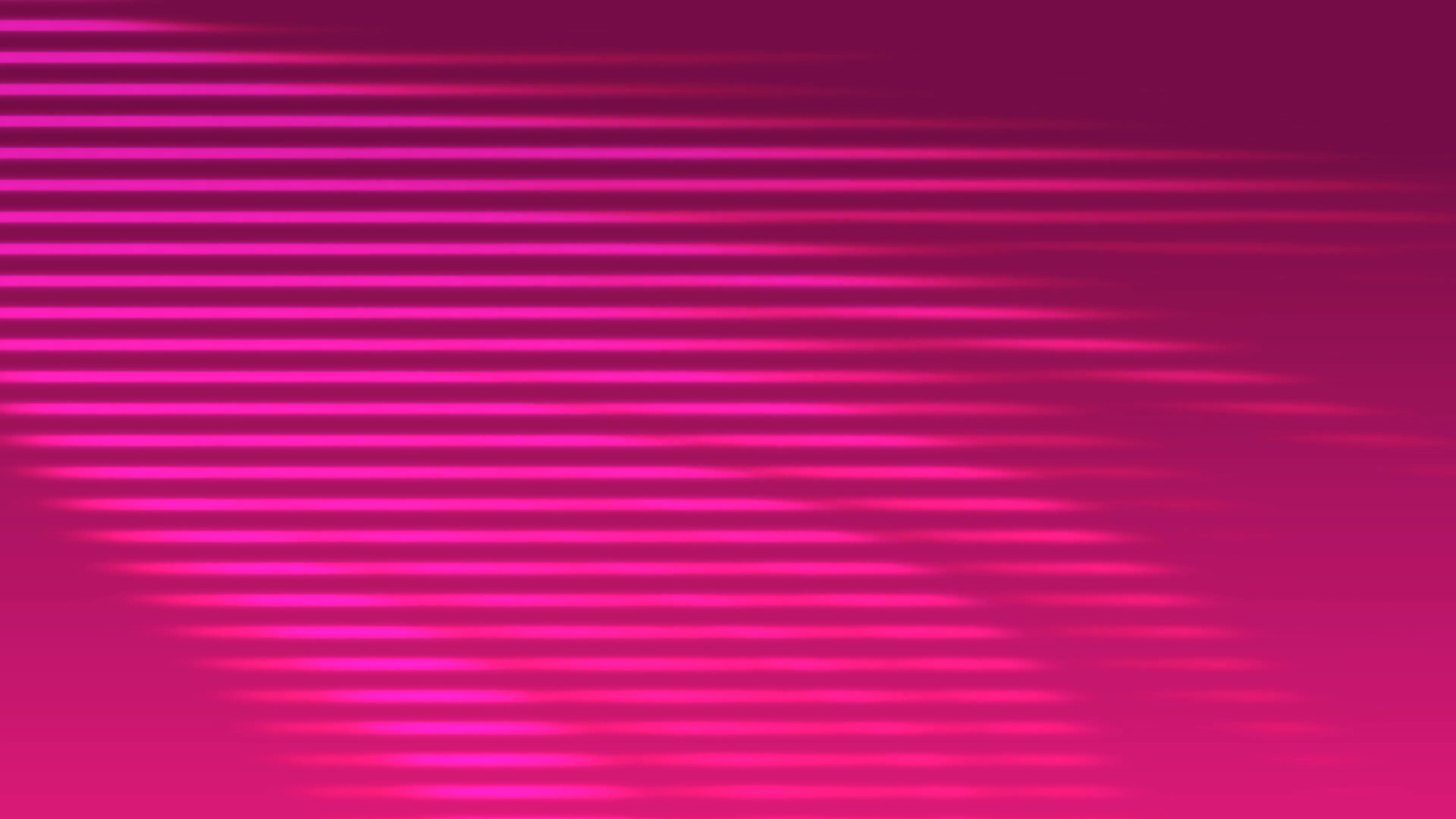 3840x2160 Pink Horizontal Vector Lines Flow Down The Screen Creating A