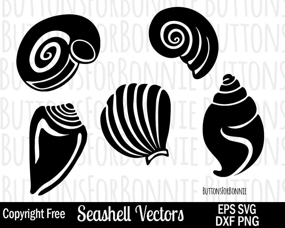 1000x800 Seashell Svg Ocean Svg Summer Svg Beach Svg Seashell Etsy