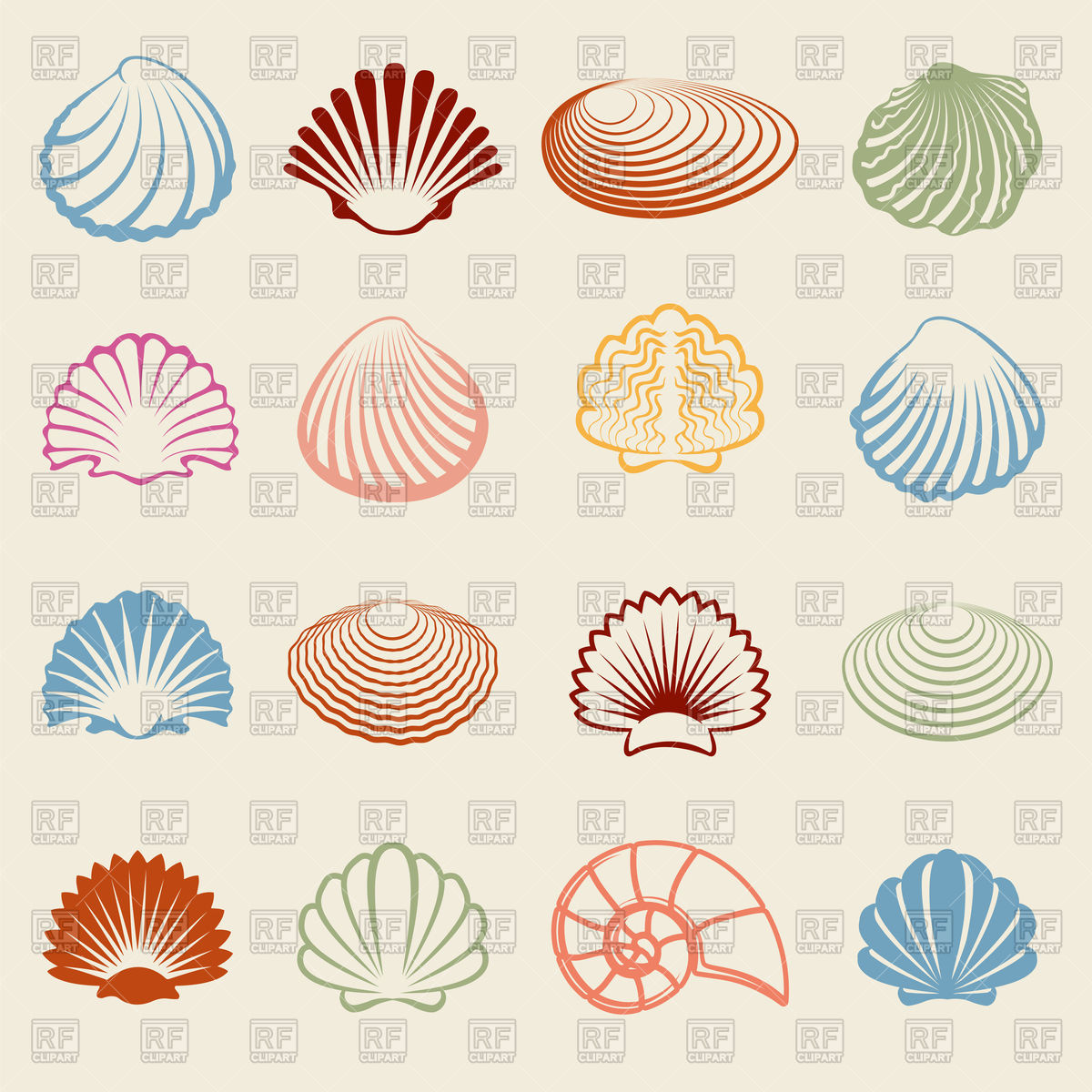 1200x1200 Seashell Vector Images Amp Illustrations Vector Graphics Rfclipart