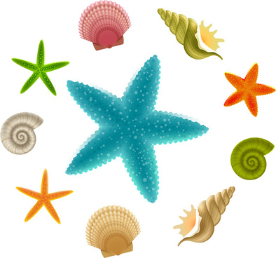 394x368 Vector Seashell Eps Free Vector Download (179,664 Free Vector) For