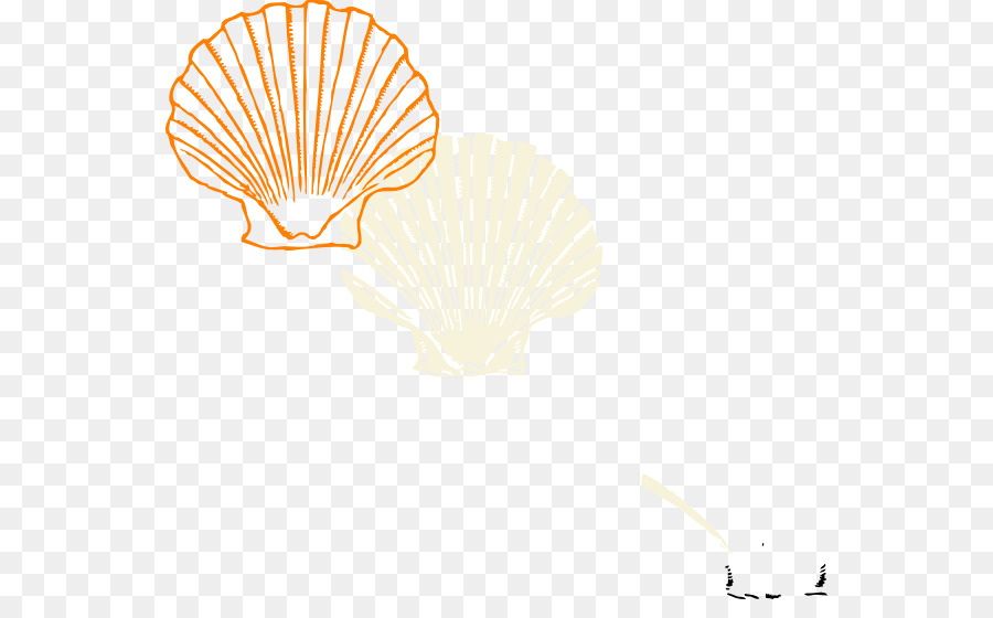 900x560 Coloring Book Seashell Clam Drawing