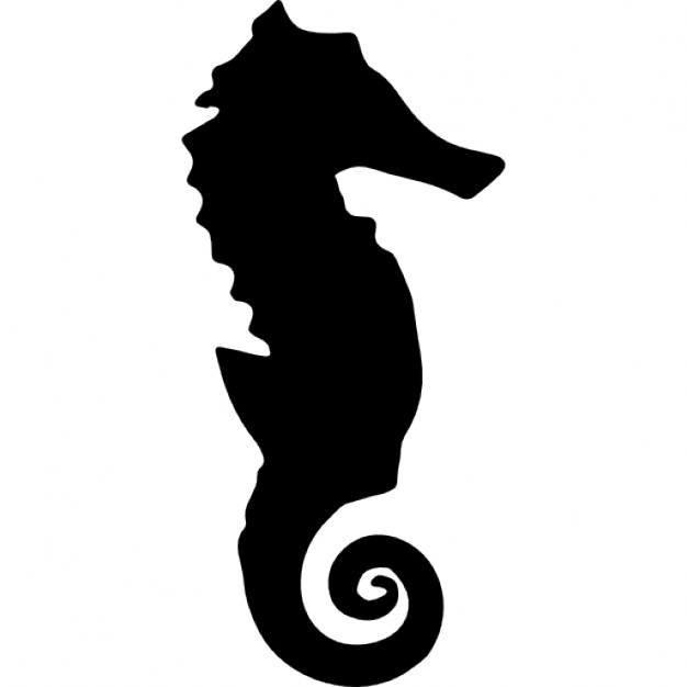 626x626 Seahorse Silhouette Icons Free Download