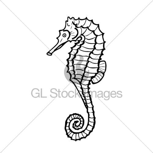 500x500 Vector Illustration Of Seahorse Silhouette Gl Stock Images