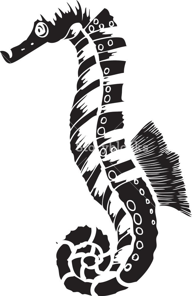648x1000 Vector Seahorse Royalty Free Stock Image