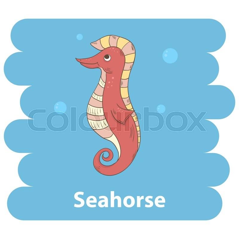 800x800 Cute Cartoon Seahorse Vector Illustration.cartoon Animal Seahorse