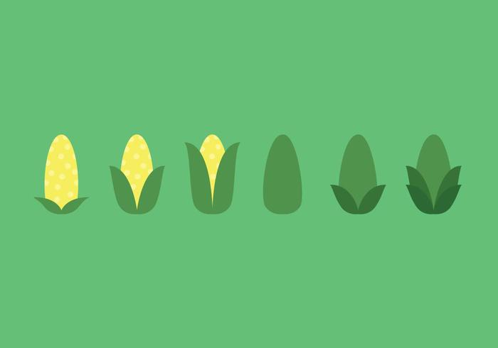 700x490 Ear Of Corn Vector Sequence