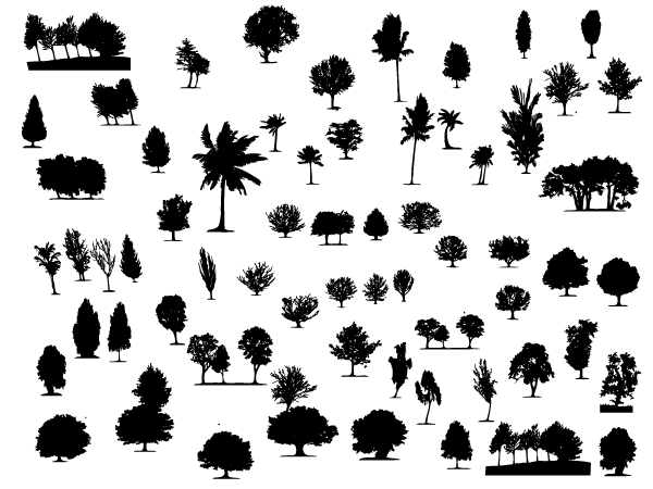 600x450 Large Collection Of Free Trees And Foliage Vector Shapes Graphic