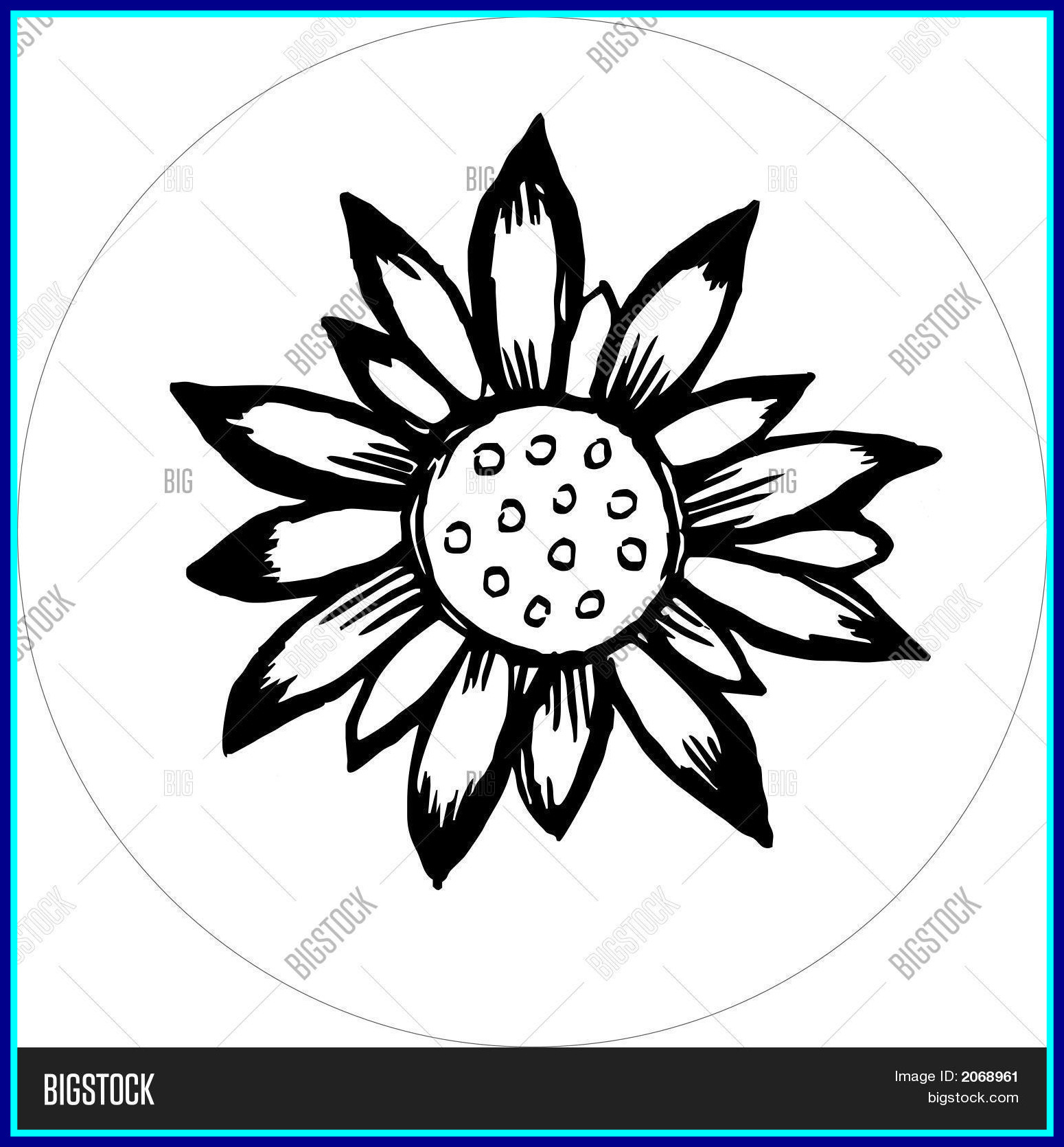 1550x1670 Amazing Flower Draw Black White Eps Vector U Photo Bigstock For