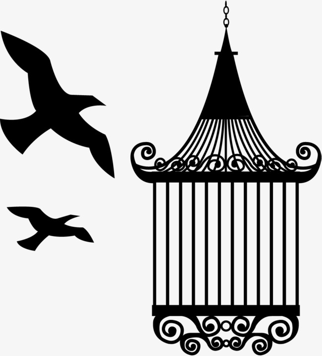 650x719 Bird Trap, Trap, Framing Trap, Purposely Set Png And Vector For