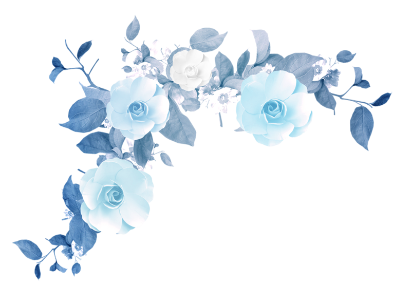 800x590 Watercolor Flower Tumblr Png
