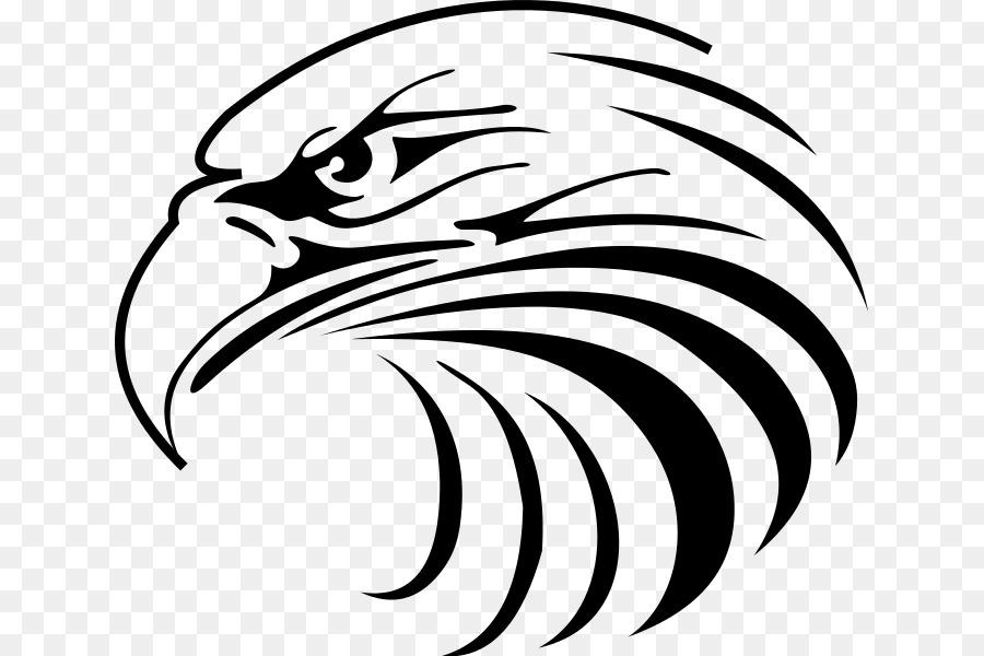 900x600 Bald Eagle Drawing Clip Art