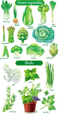 188x368 Vegetable Free Vector Download (1,007 Free Vector) For Commercial