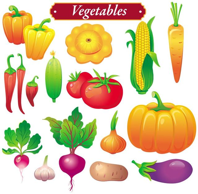 640x627 Free Vectors Bright Colored Vegetable Set Anonymous