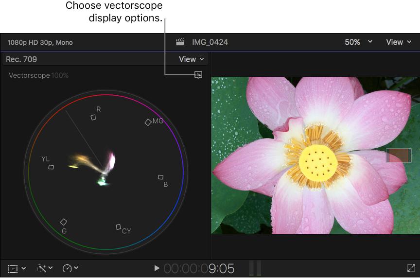 864x572 Final Cut Pro X Vectorscope Display Options
