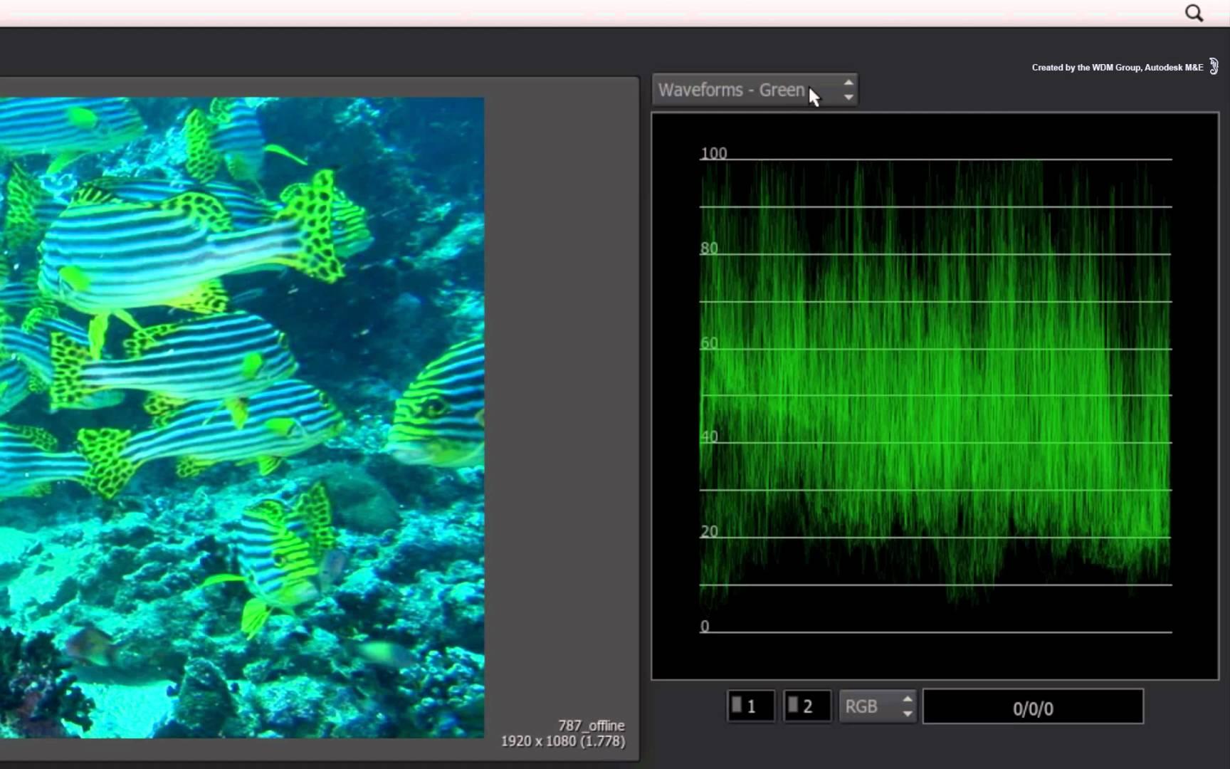 1728x1080 Vectorscope Amp Waveform Monitors