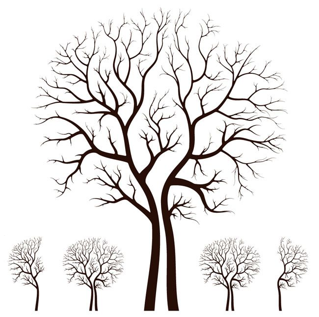 650x645 Vector Image Of Tree Leafless Autumn Tree Design Vector Free