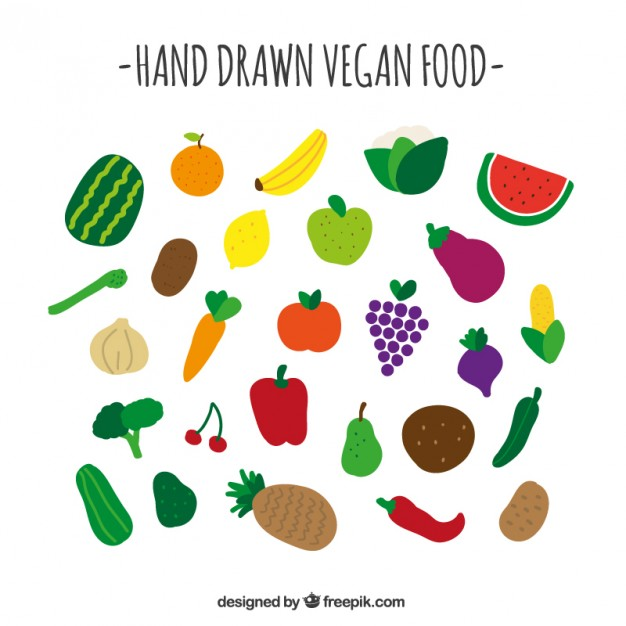 626x626 Vegan Food Collection Vector Free Download