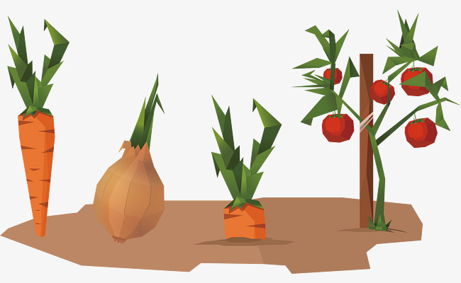 650x400 Vector Vegetable Garden, Vegetable Vector, Garden Vector, Low