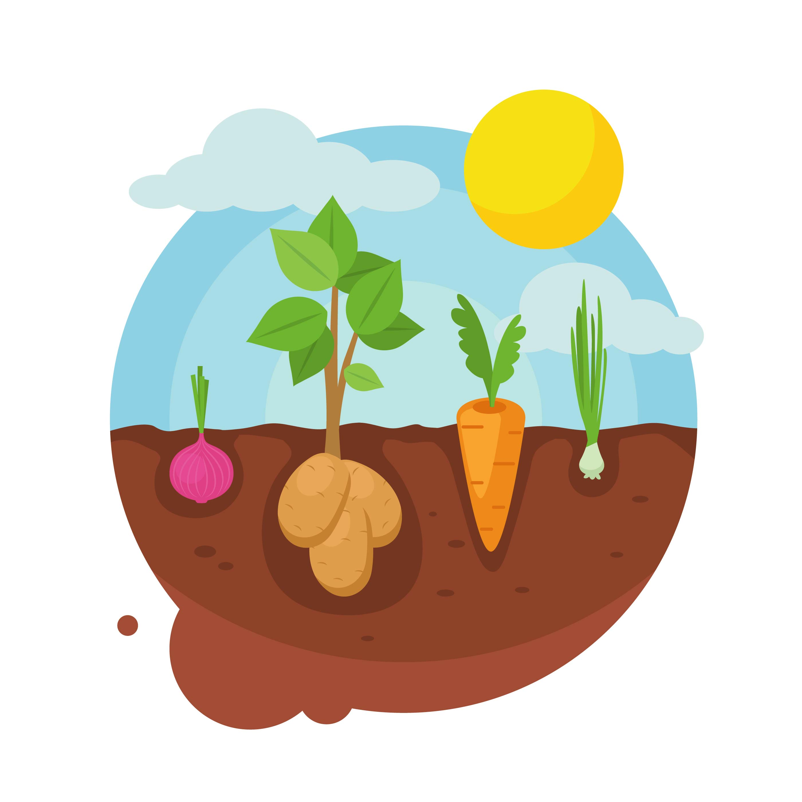 2800x2800 Vegetable Garden Free Vector Art