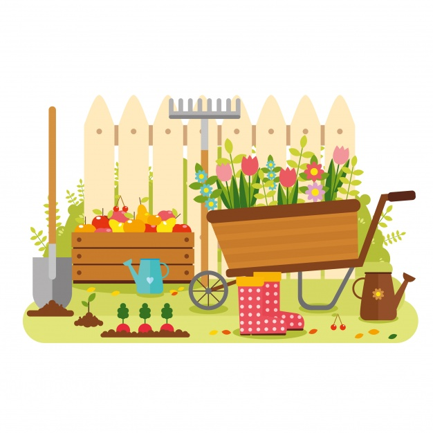626x626 Vegetable Garden Graphic Vegetable Garden Vectors, Photos And Psd